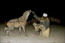 صور غريبة لرجل يطعم الضباع ويعيش معها Images10