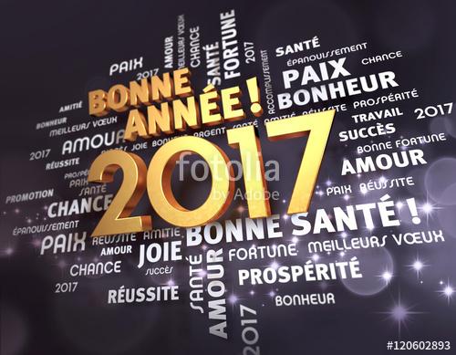 ANNEE 2017 Fotoli10