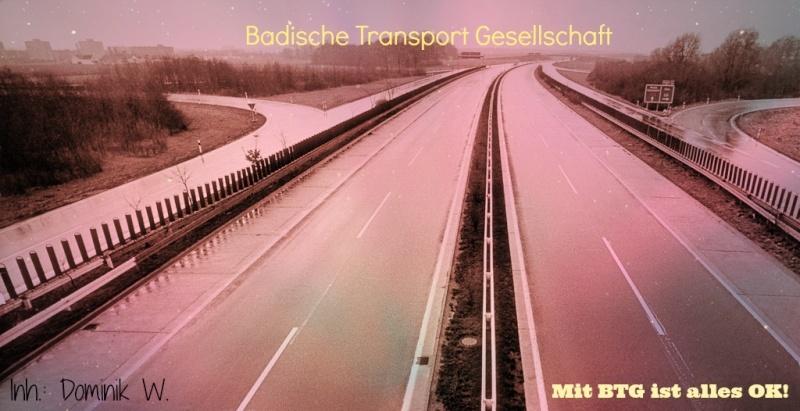 [ETS2] BTG - Badische Transport Gesellschaft Lol10