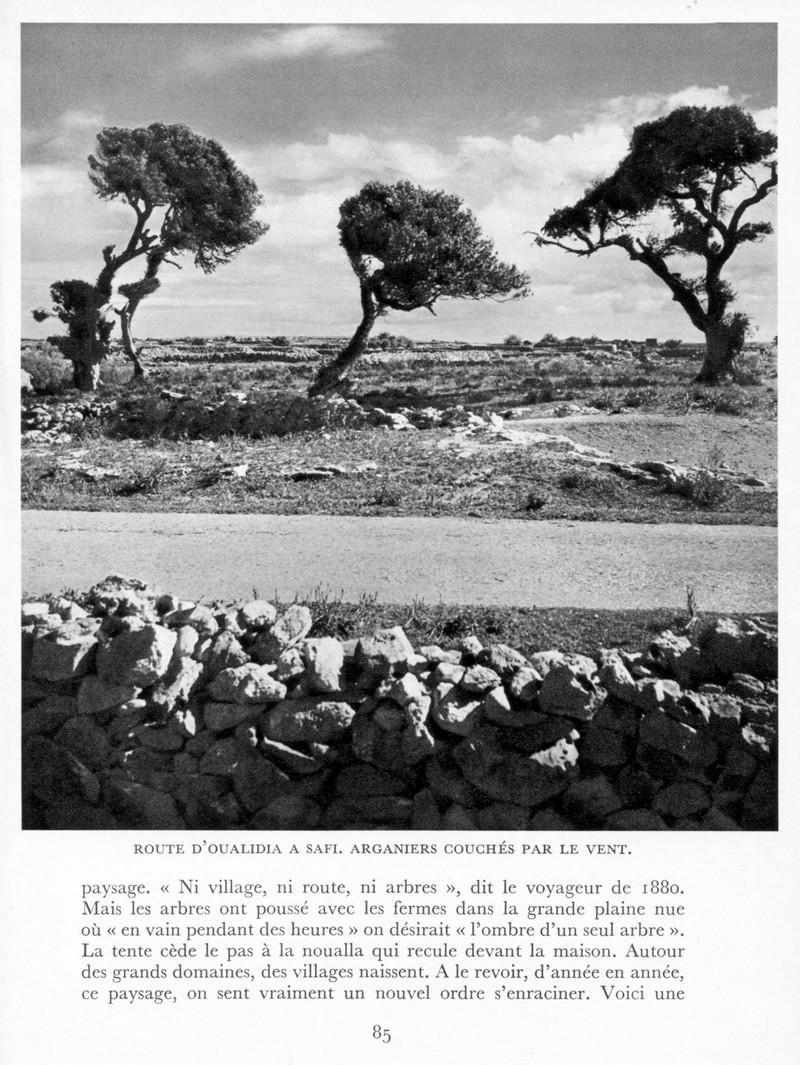 LE MAROC (J. - L. Miège) - Page 4 Maroc102