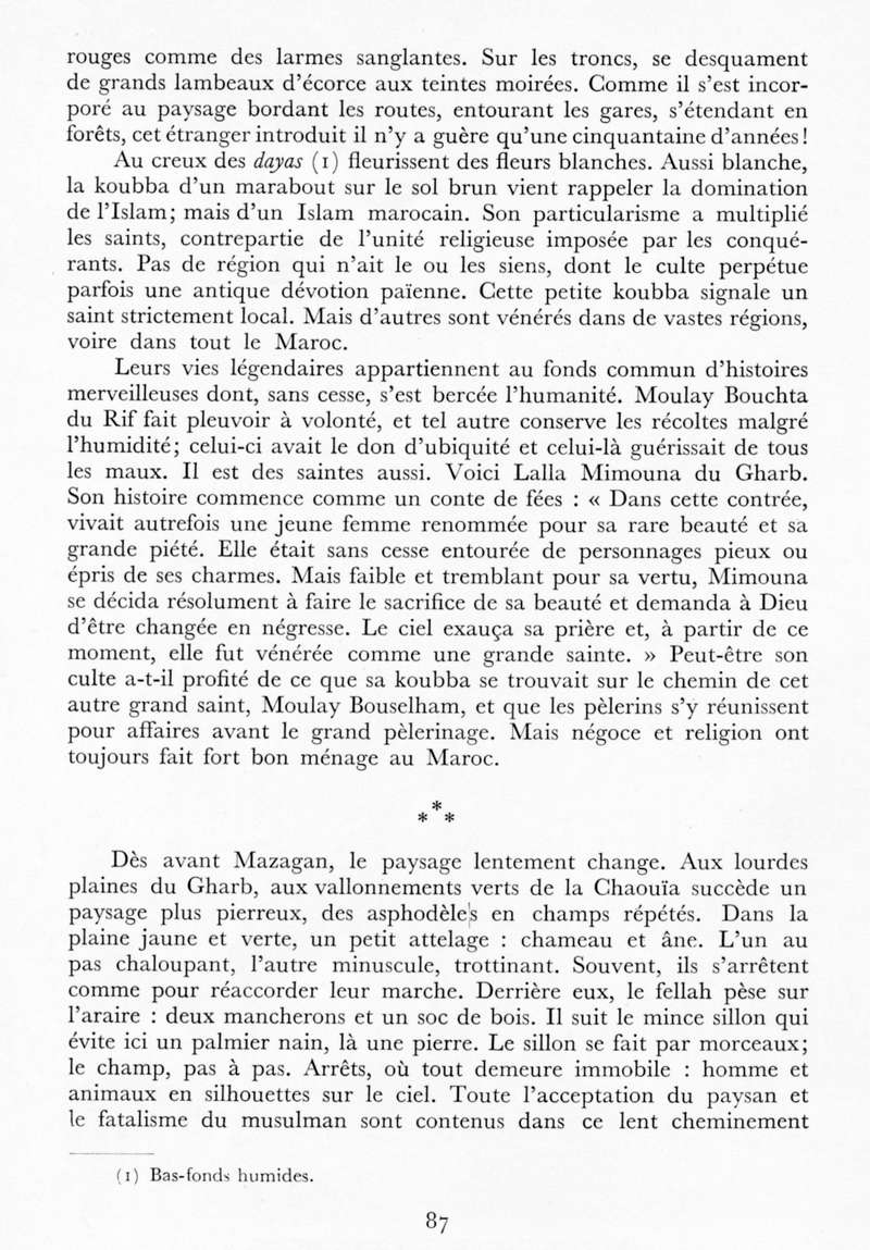 LE MAROC (J. - L. Miège) - Page 4 Maroc104