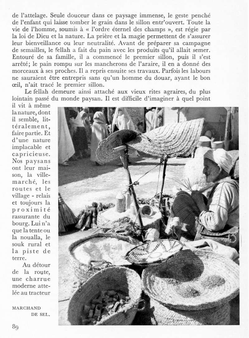 LE MAROC (J. - L. Miège) - Page 4 Maroc107