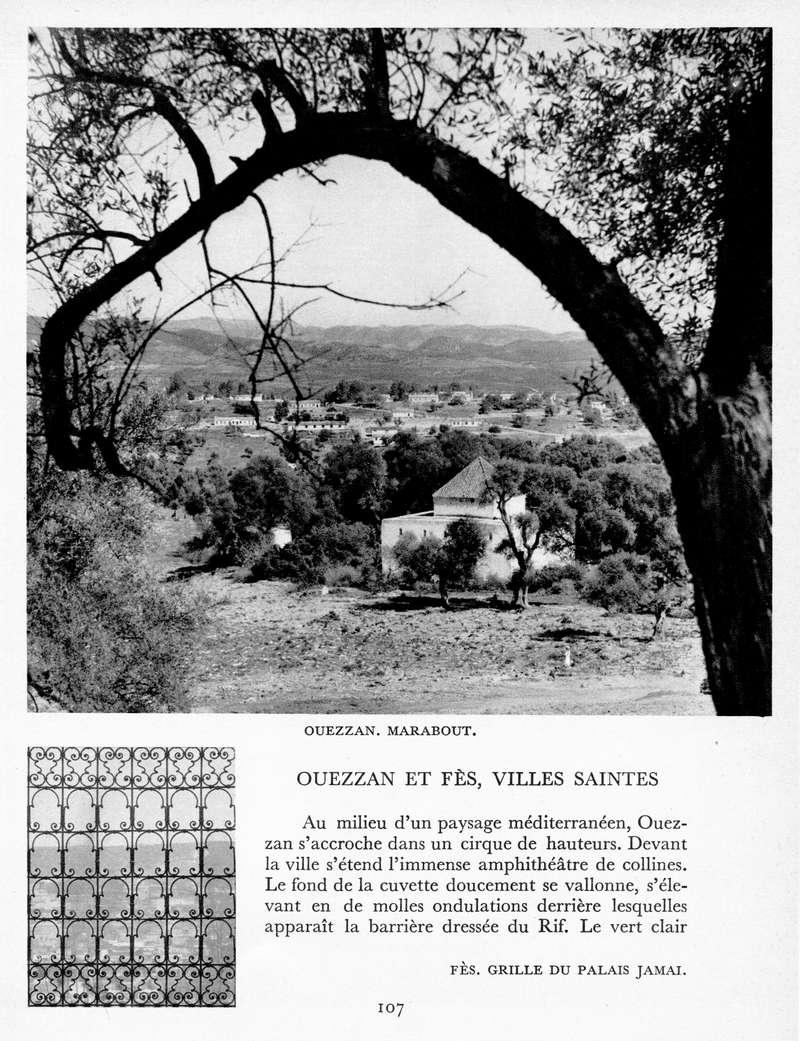 LE MAROC (J. - L. Miège) - Page 5 Maroc126
