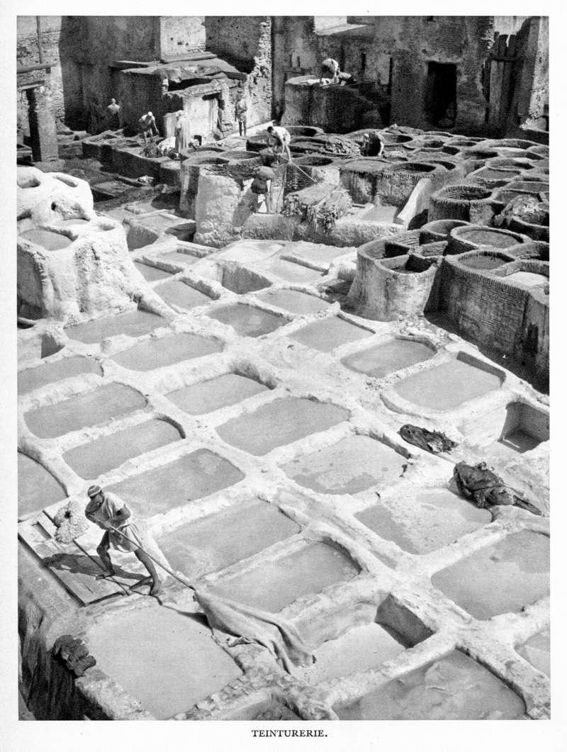 LE MAROC (J. - L. Miège) - Page 5 Maroc143