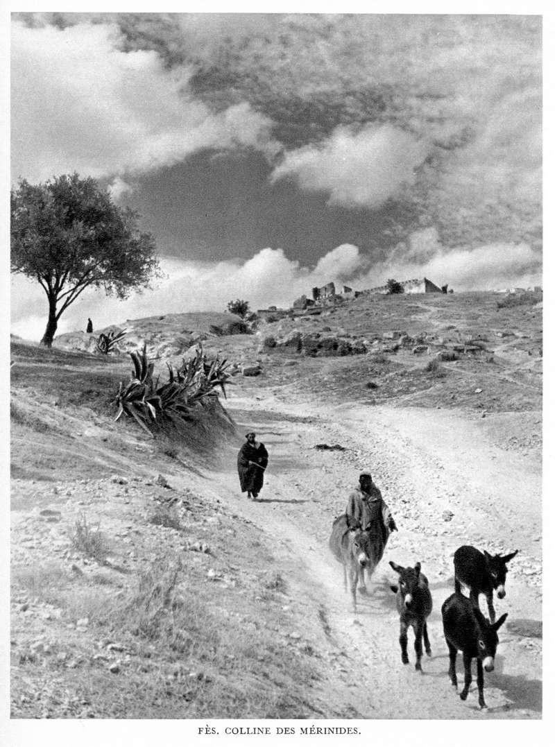 LE MAROC (J. - L. Miège) - Page 6 Maroc149