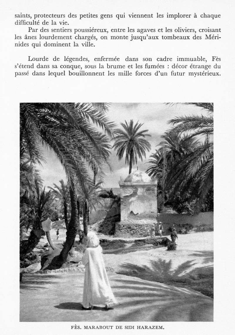 LE MAROC (J. - L. Miège) - Page 6 Maroc150