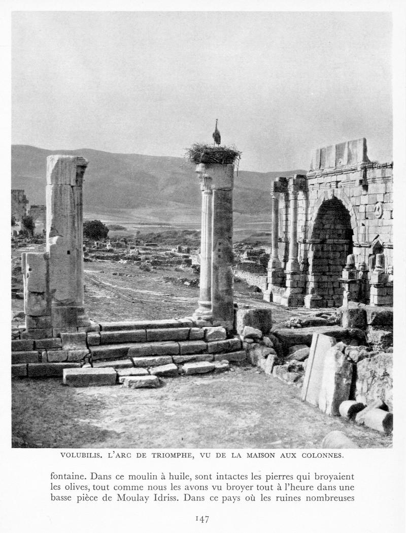 LE MAROC (J. - L. Miège) - Page 6 Maroc166