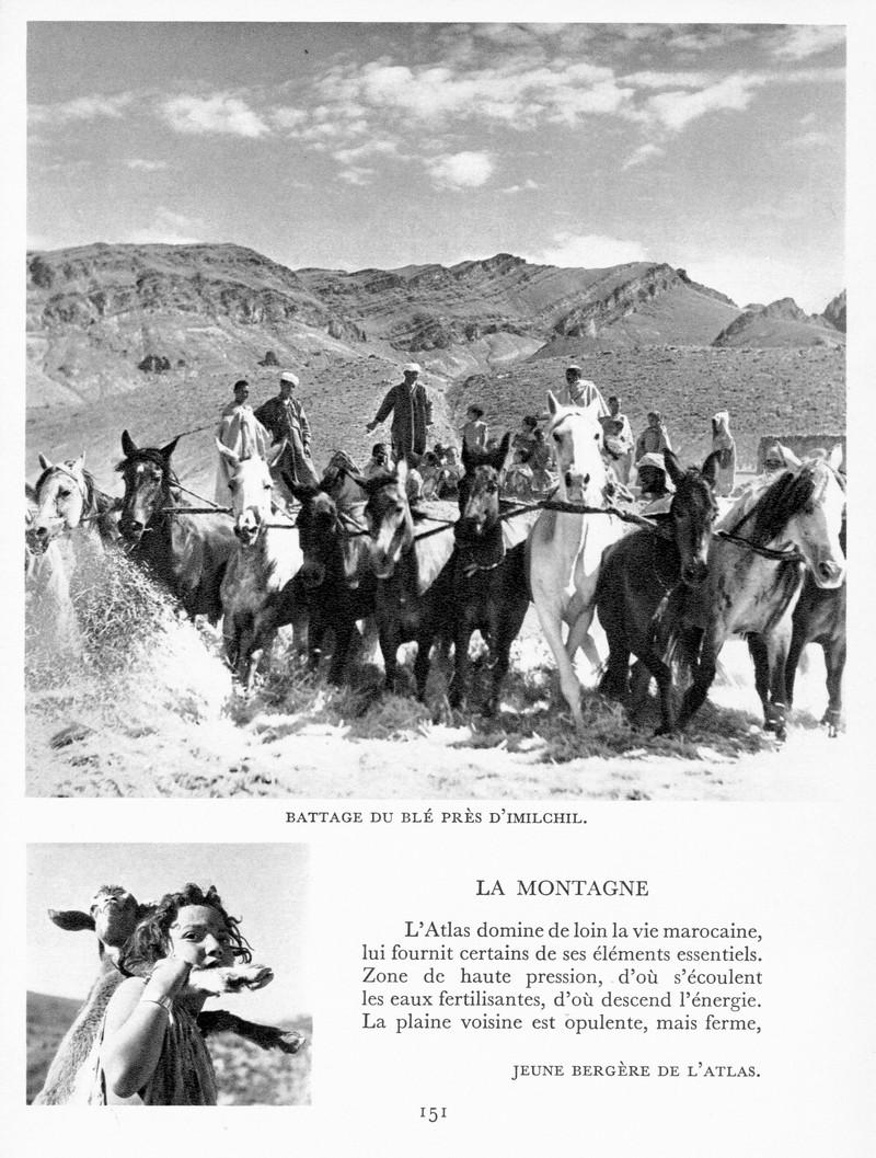 LE MAROC (J. - L. Miège) - Page 6 Maroc170