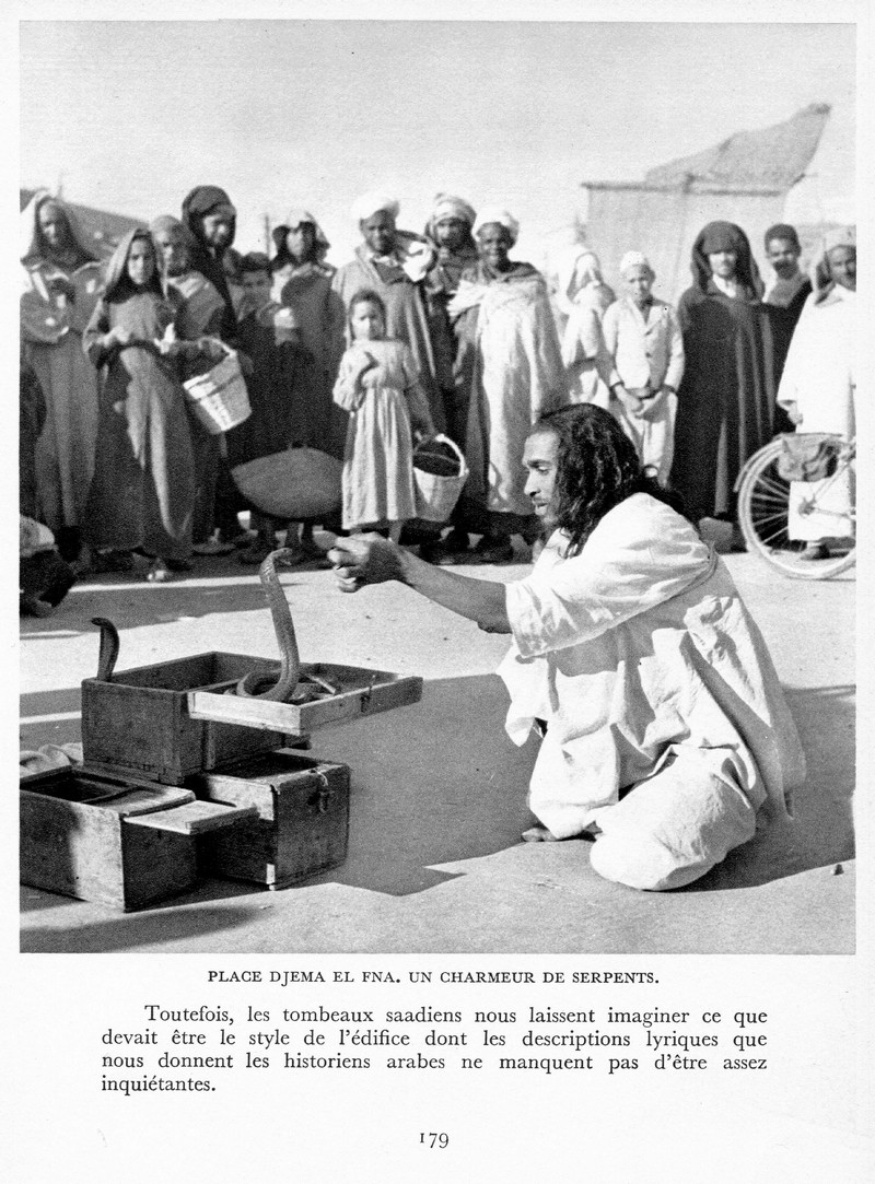 LE MAROC (J. - L. Miège) - Page 8 Maroc199