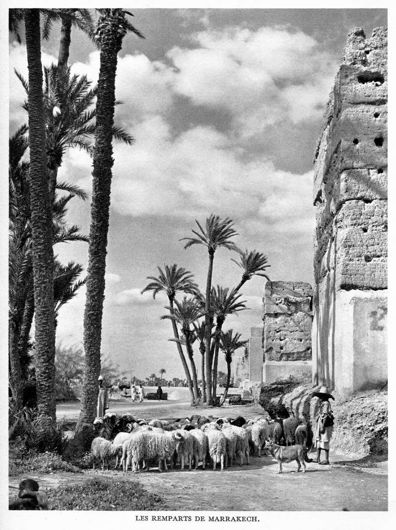 LE MAROC (J. - L. Miège) - Page 8 Maroc210