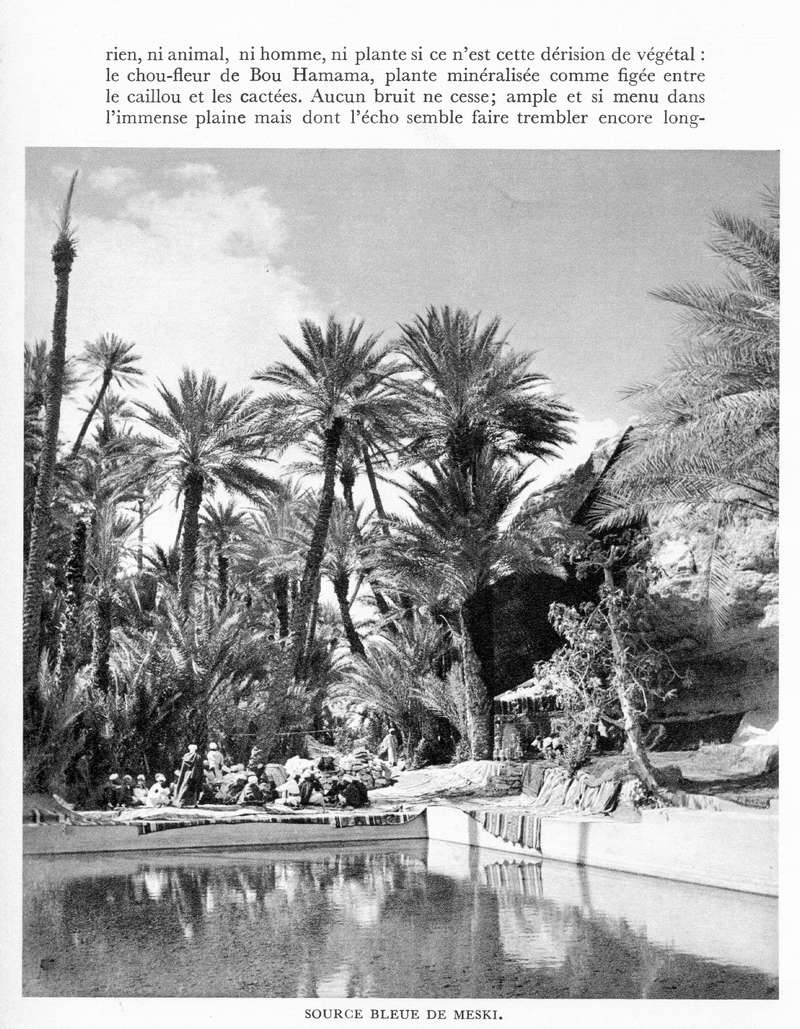 LE MAROC (J. - L. Miège) - Page 9 Maroc232