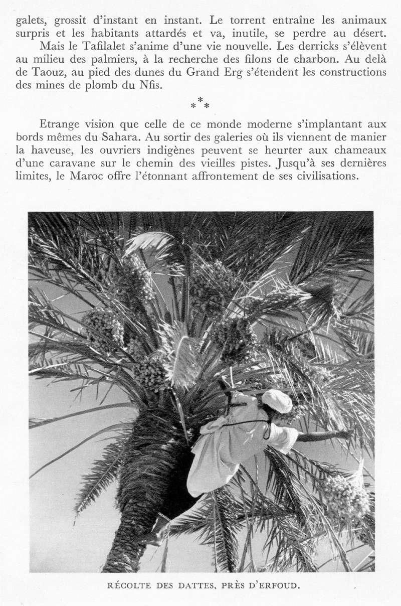 LE MAROC (J. - L. Miège) - Page 9 Maroc241