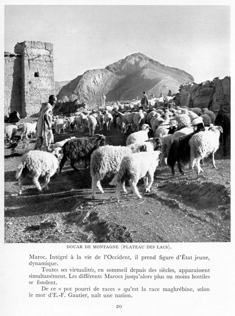 LE MAROC (J. - L. Miège) Maroc_35