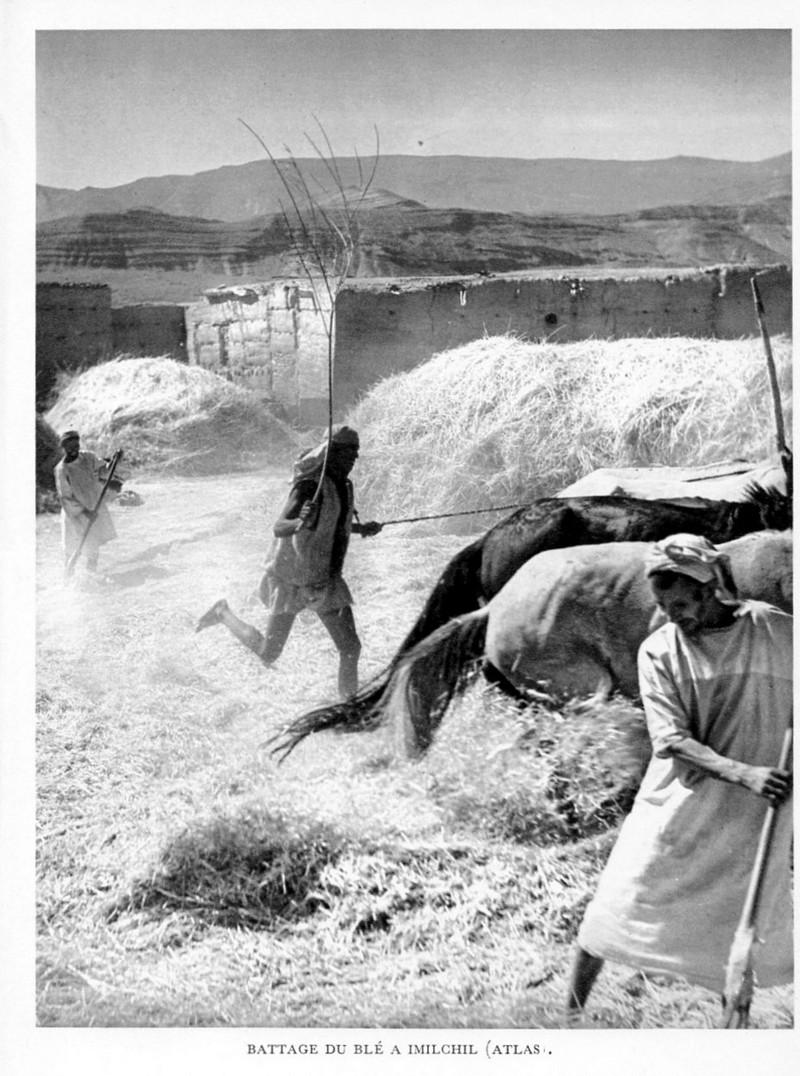 LE MAROC (J. - L. Miège) Maroc_37