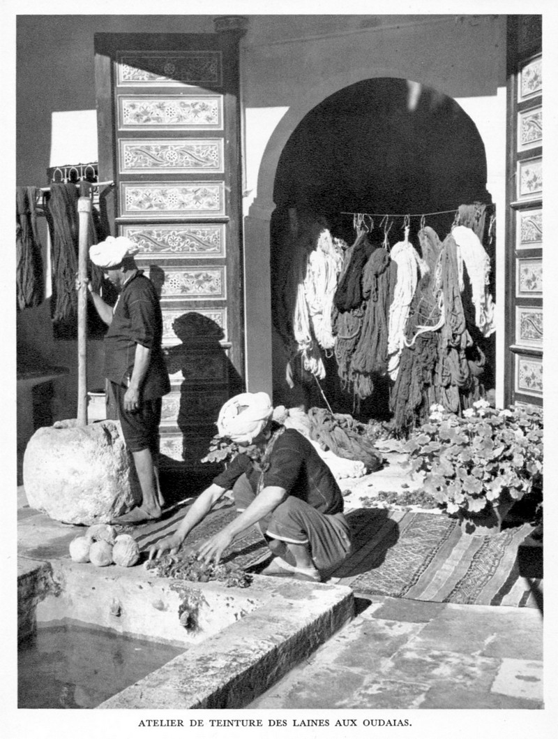 LE MAROC (J. - L. Miège) - Page 3 Maroc_83