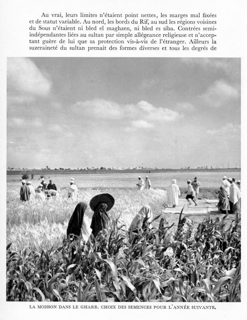 LE MAROC (J. - L. Miège) - Page 4 Maroc_97