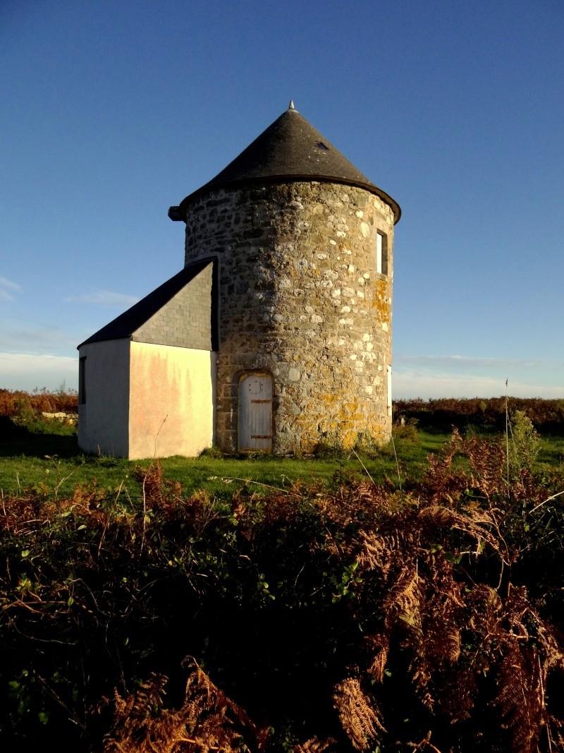 le moulin des sympétrums 20011