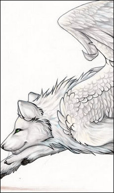 Angels Wolves [0/2] Commis11