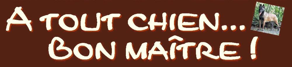 A Tout Chien... Bon maitre !