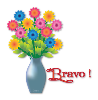 Kikou Bravo_12