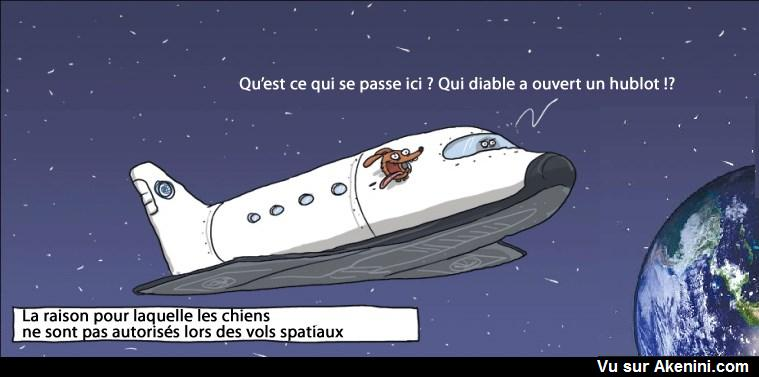 HUMOUR - blagues - Page 20 09610
