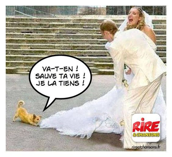 HUMOUR - blagues - Page 18 0d1a5e10