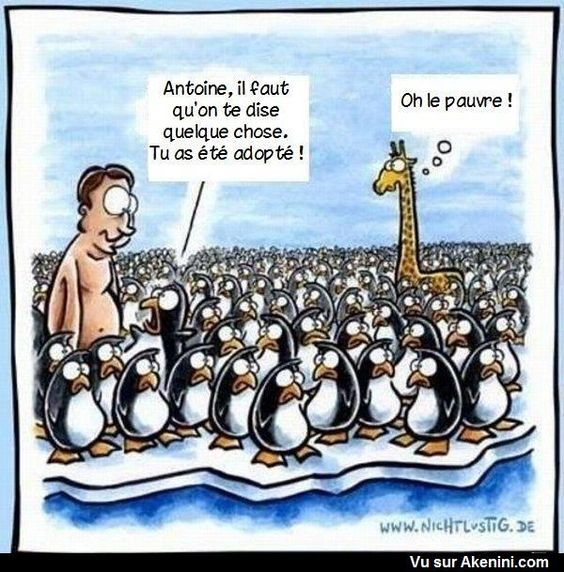 HUMOUR - blagues - Page 2 15771d10