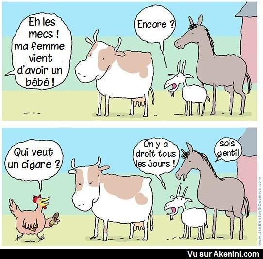 HUMOUR - blagues - Page 20 20240c10