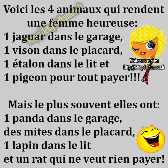 HUMOUR - blagues - Page 3 264c1610