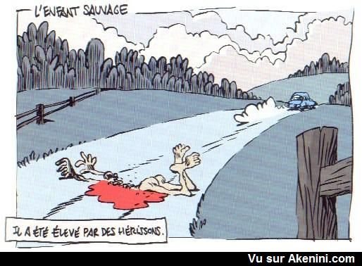 HUMOUR - blagues - Page 17 48007b10
