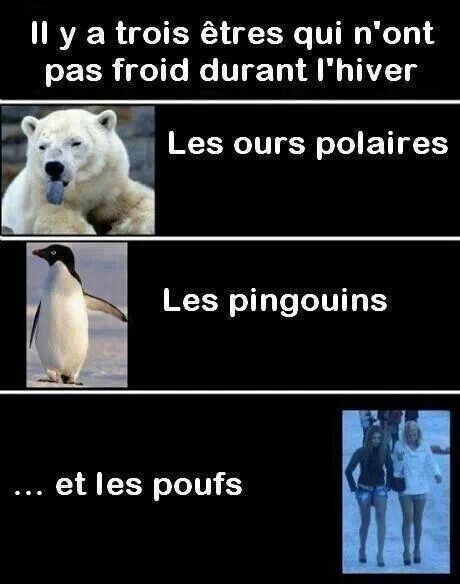 HUMOUR - blagues - Page 2 54218710
