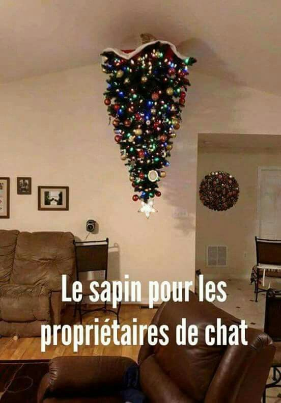 HUMOUR - blagues - Page 20 7b93ba10