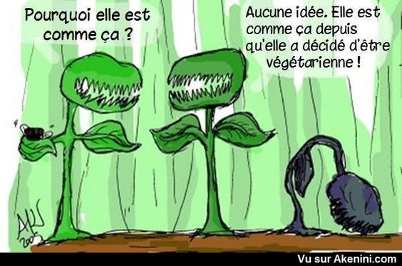 HUMOUR - blagues 84229610
