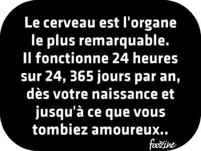 HUMOUR - blagues - Page 5 942c4b10
