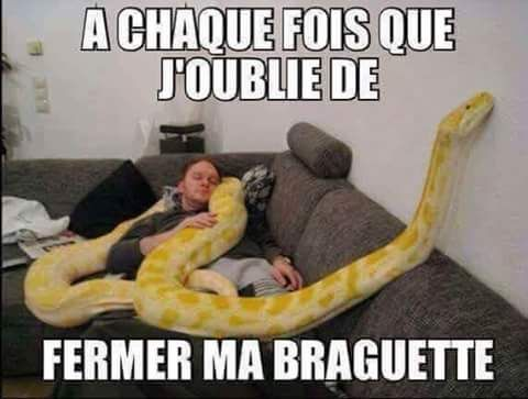 HUMOUR - blagues - Page 17 B18f9510