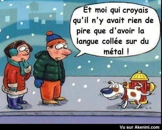 HUMOUR - blagues - Page 3 B6b56810