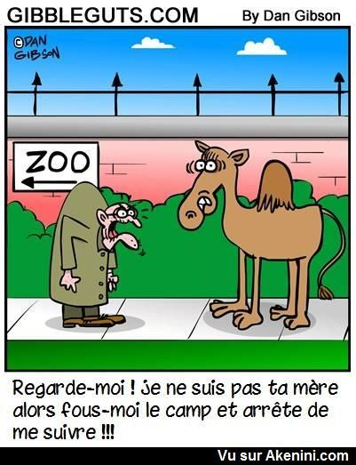 HUMOUR - blagues - Page 20 Bf1d7f10