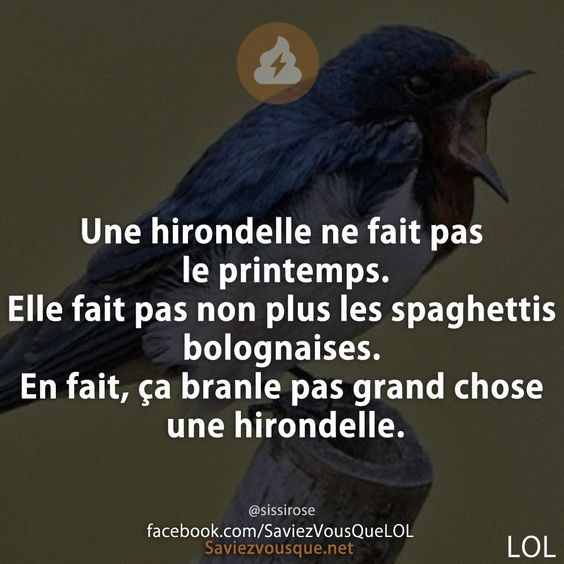 HUMOUR - blagues - Page 2 Dbe40810