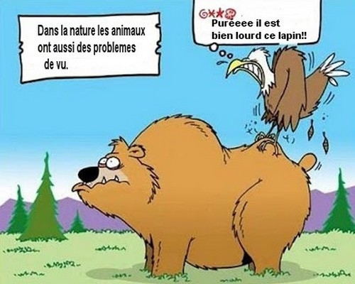 HUMOUR - blagues - Page 20 L-201310