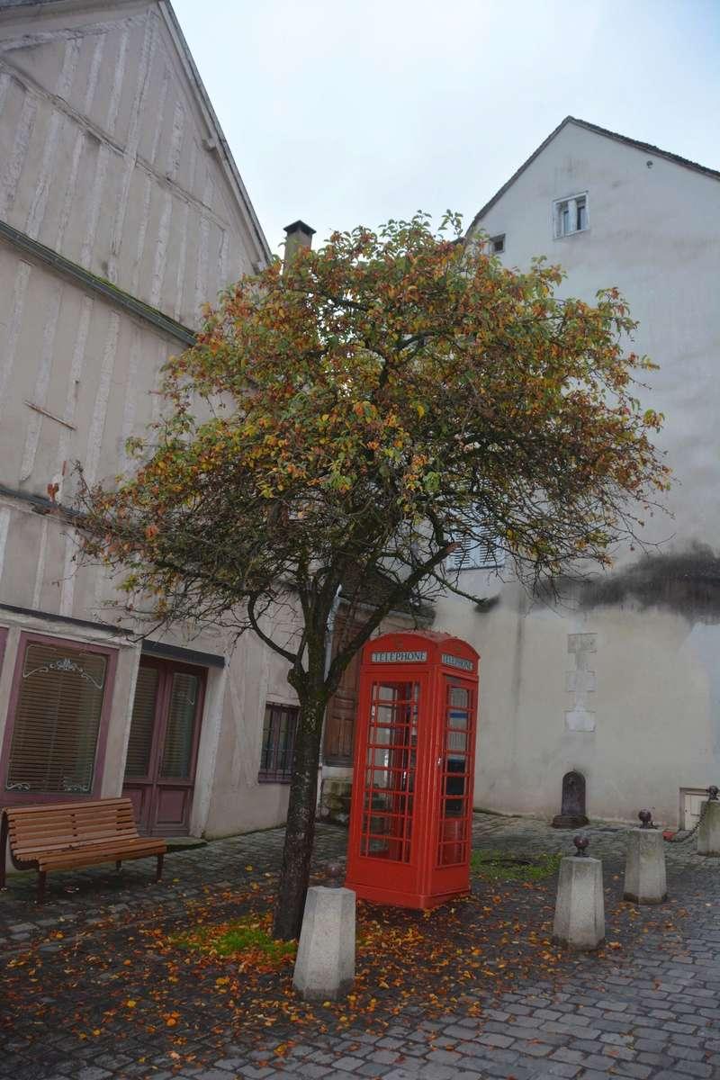 Auxerre - Vallée de l'Yonne - 5-6 novembre 2016 Dsc_6332