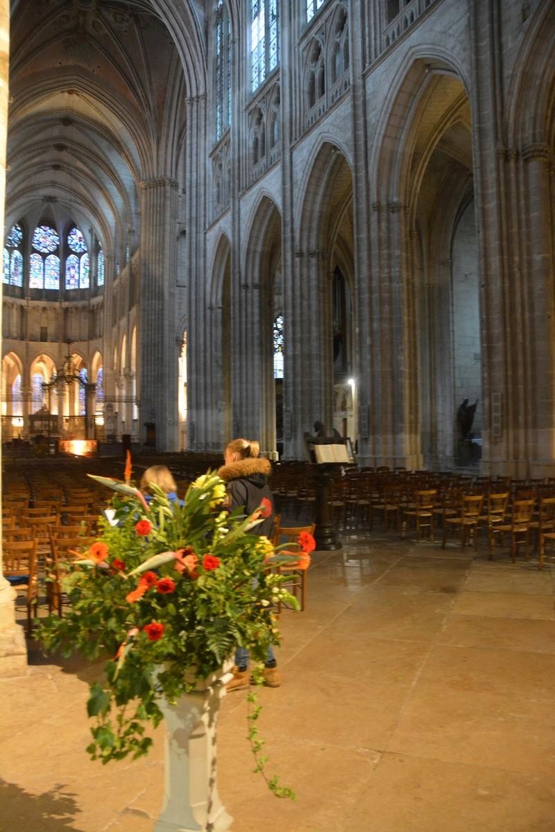 Auxerre - Vallée de l'Yonne - 5-6 novembre 2016 Dsc_6333