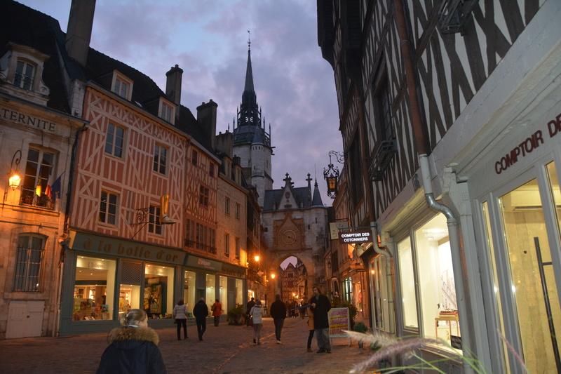 Auxerre - Vallée de l'Yonne - 5-6 novembre 2016 Dsc_6335