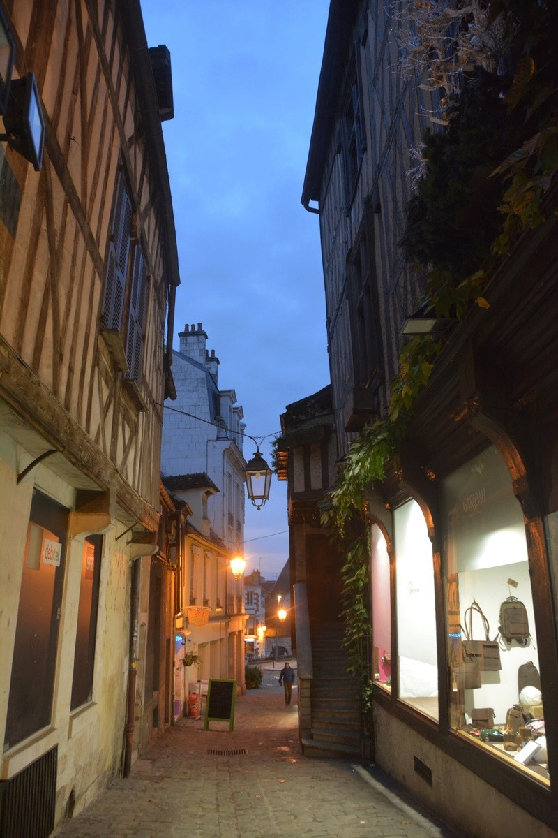 Auxerre - Vallée de l'Yonne - 5-6 novembre 2016 Dsc_6339