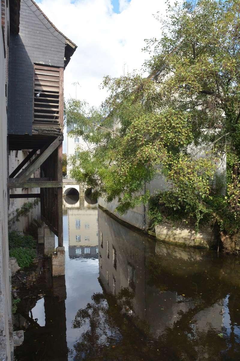 Auxerre - Vallée de l'Yonne - 5-6 novembre 2016 Dsc_6413