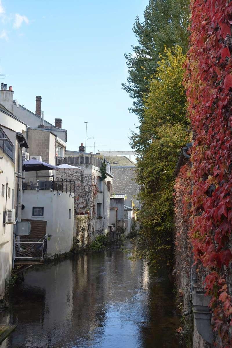 Auxerre - Vallée de l'Yonne - 5-6 novembre 2016 Dsc_6418