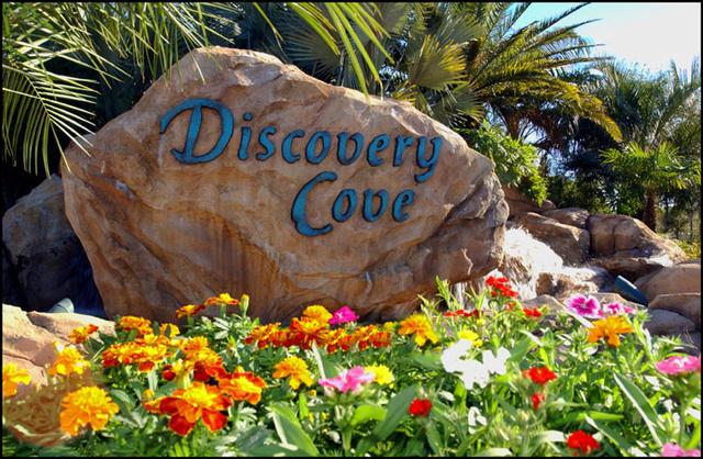 Redbull et Kiara / WdW septembre Trip 2016 /Demande en mariage+MNSSH+Discovery cove+seaworld+Daytona+Universal - Page 6 Discov11