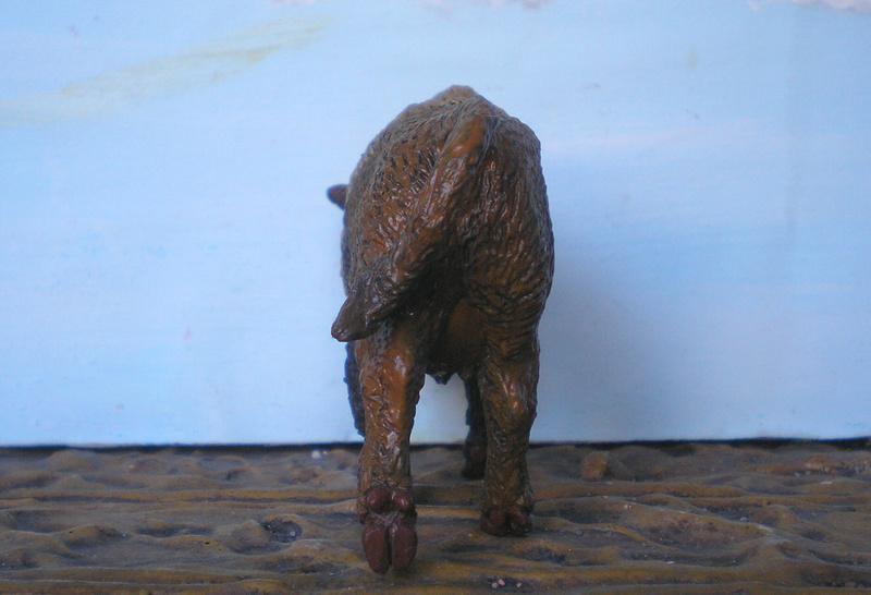 Bemalungen, Umbauten, Modellierungen - neue Tiere für meine Dioramen - Seite 5 243e2g10