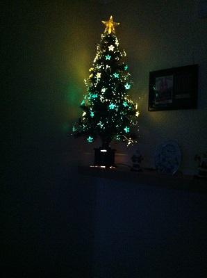 Christmas Trees! Img_0110