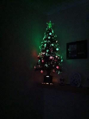 Christmas Trees! Img_0111