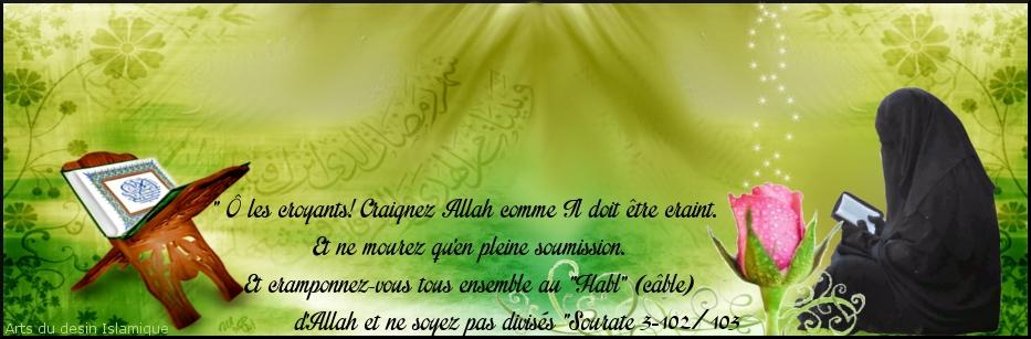 ღLe Monde Des Salafiyyatesღ